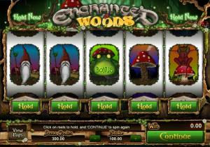 Ewoods2